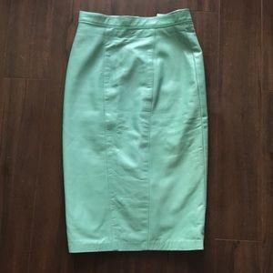 Danier Rare Mint Green Skirt